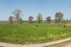Corrie van Bommel - Panorama - 02