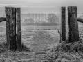 Jos van der Wijst - Landschap - Grote Vilt, Beugen