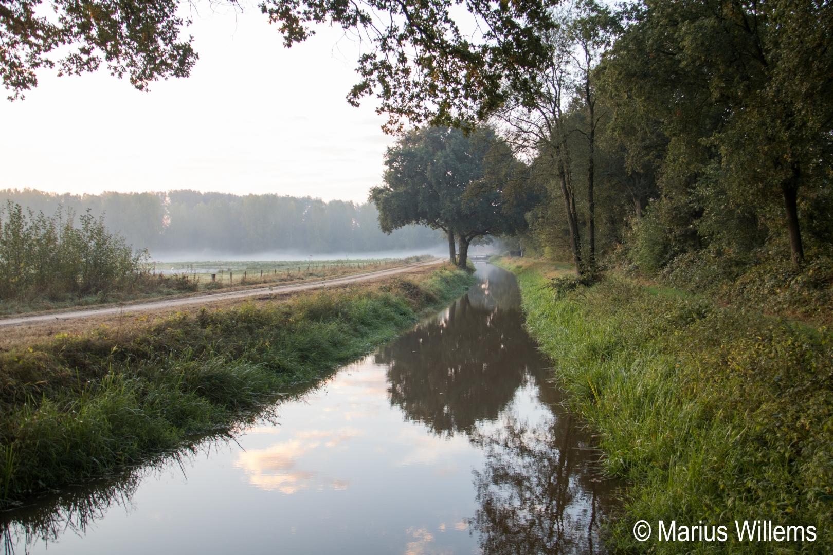 Marius Willems