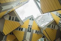 Corrie van Bommel -Kikvors perspectief - 02