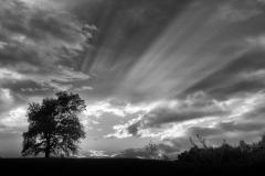 Nel van Duren - Het beste van Q4 - 02