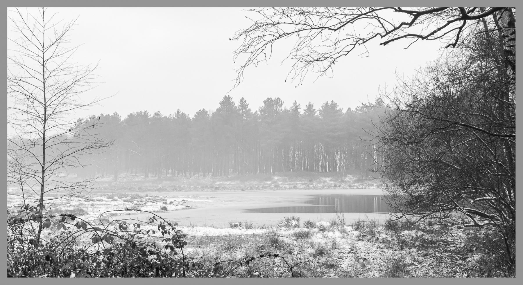 Corrie van Bommel - Winter - 03