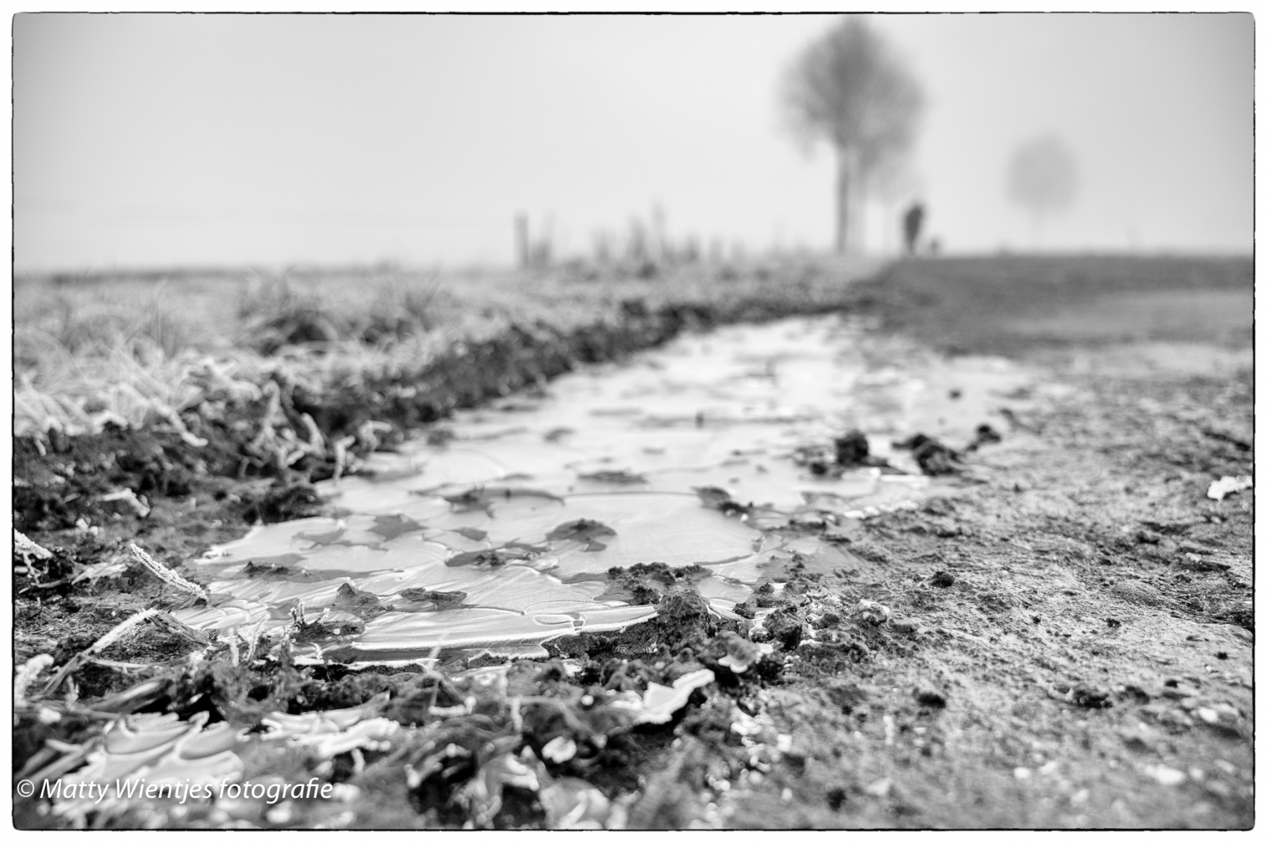 Matty Wientjes - Winter - 01