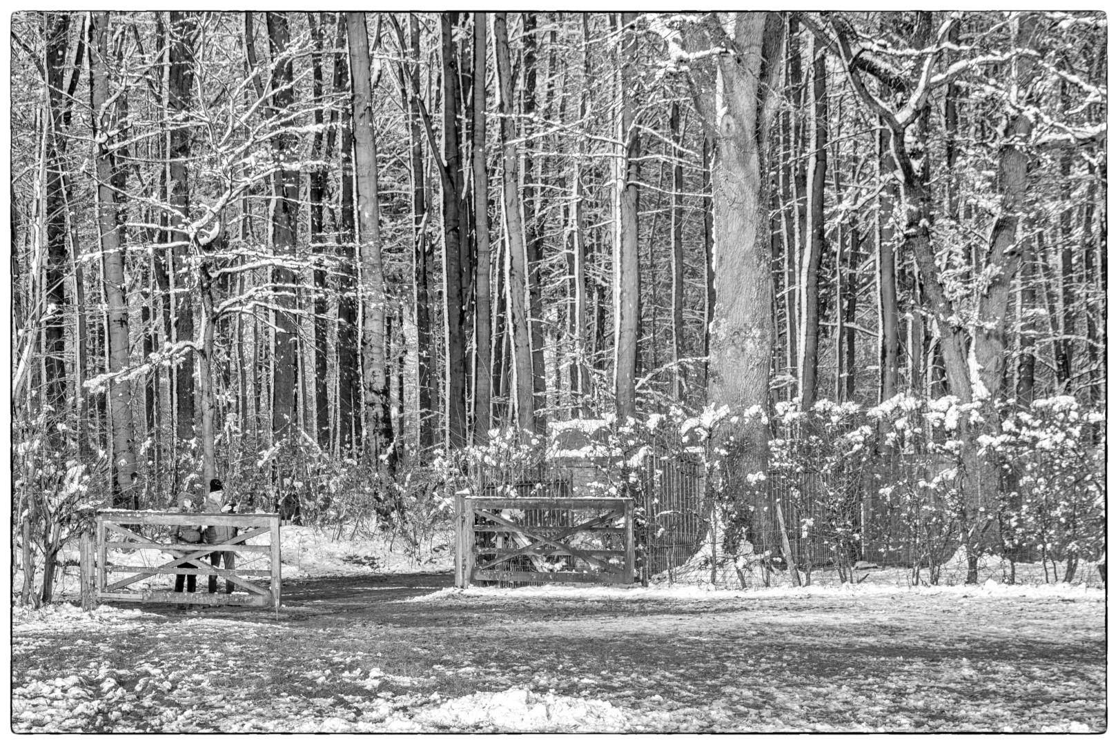 Nel van Duren - winter - 02