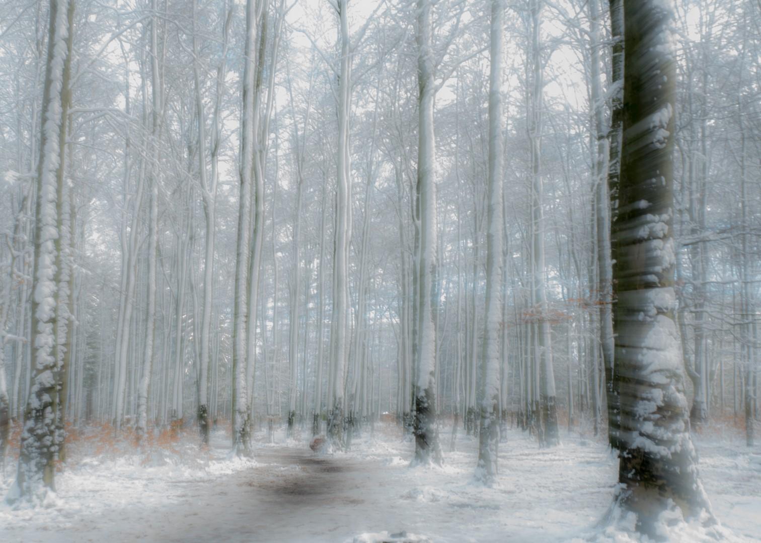 Nel van Duren - winter - 03