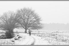 Corrie van Bommel - Winter - 02