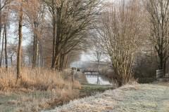 Marius Willems - Winter - 01