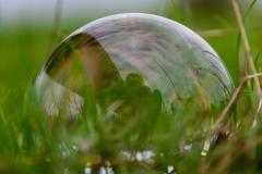 Hendrikje Delhaes - Spiegeling-Reflectie-Symmetrie - 02